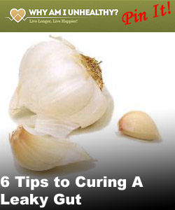 6-tips-to-curing-a-leaky-gut