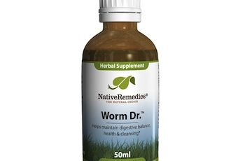 Official Worm Dr. Review – Does It Really Cure Intestinal Worms?