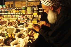 Top Healing Herbs