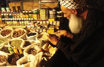 Top 20 Healing Herbs